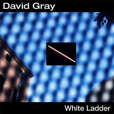 David Gray White Ladder